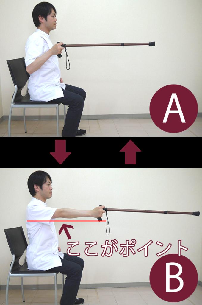 杖を持って腕の屈伸運動